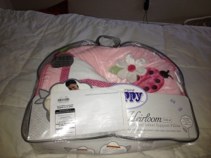 """The Boppy (a gift from Byron's coworker) to aid with breastfeeding.  My labor and delivery teacher said she likes """"My breastfriend"""" better but I have heard the boppy is better in the hospital since it doesn't wrap all the way around you."""